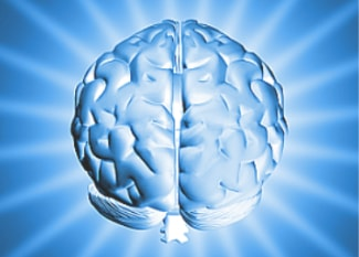 Picture of brain to show brainwave entrainment
